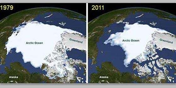 hielo560x280 - La NASA descubre un bosque de plantas marinas bajo el hielo del Ártico